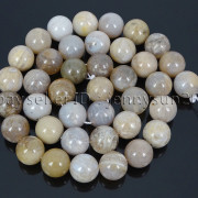 Natural-Oceam-Fossil-Coral-Agate-Gemstone-Round-Beads-155039039-Strand-4mm-6mm-8mm-282292446464-eceb